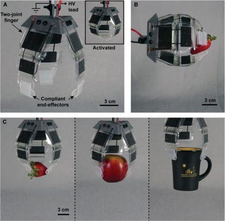 Вдъхновени от природата стави задвижват роботизирани системи на електрохидравличен арахно-бот